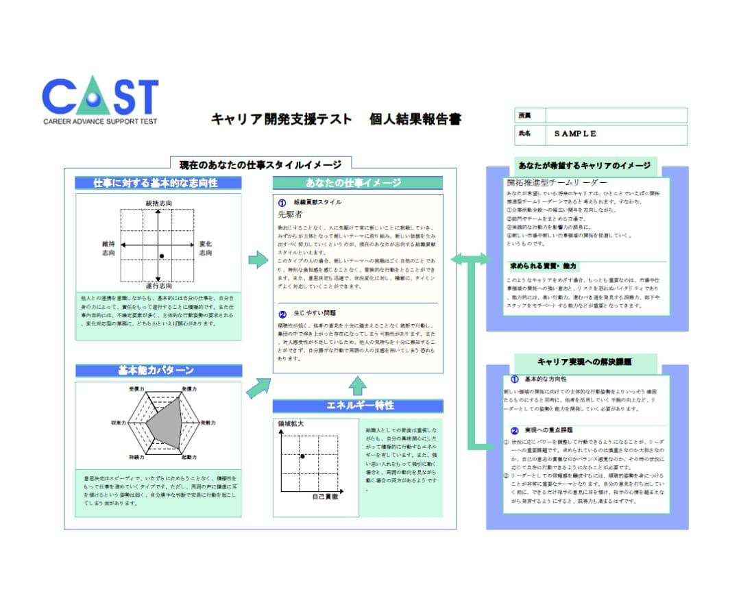 「キャリア開発支援CAST」画像